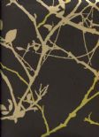 Woodland Coppice Olive Wallpaper 1901/618 By Prestigious Textiles